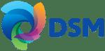 DSM_SimplifiedLogo1